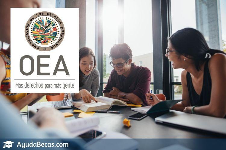 Becas OEA